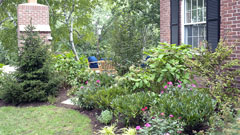 Garden design and planting in Mamaroneck, NY