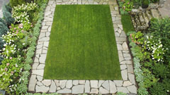 Lawn design and installation in Bronxville